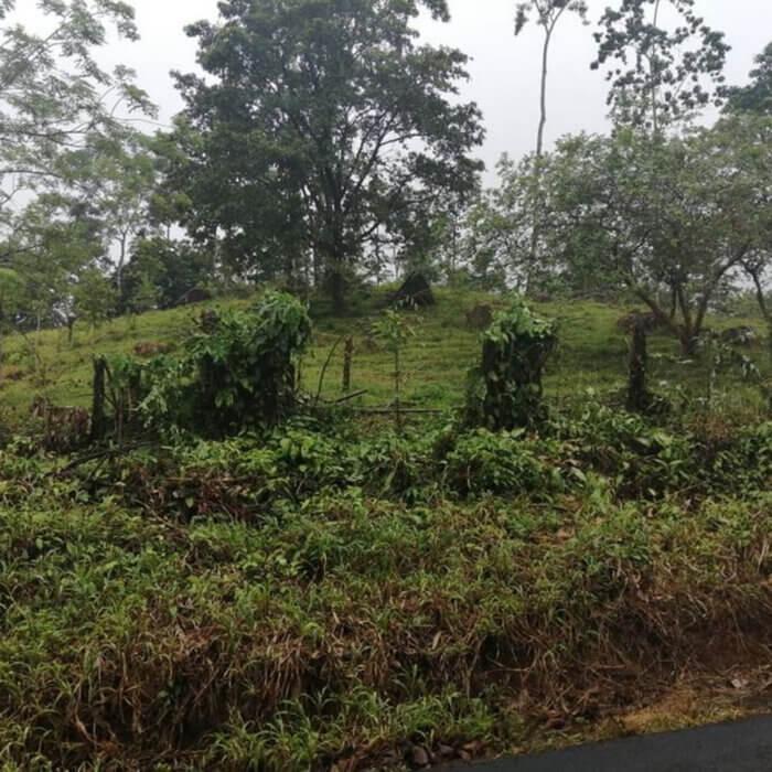 Lote en Alajuela, Precio: ¢7,151,220.00