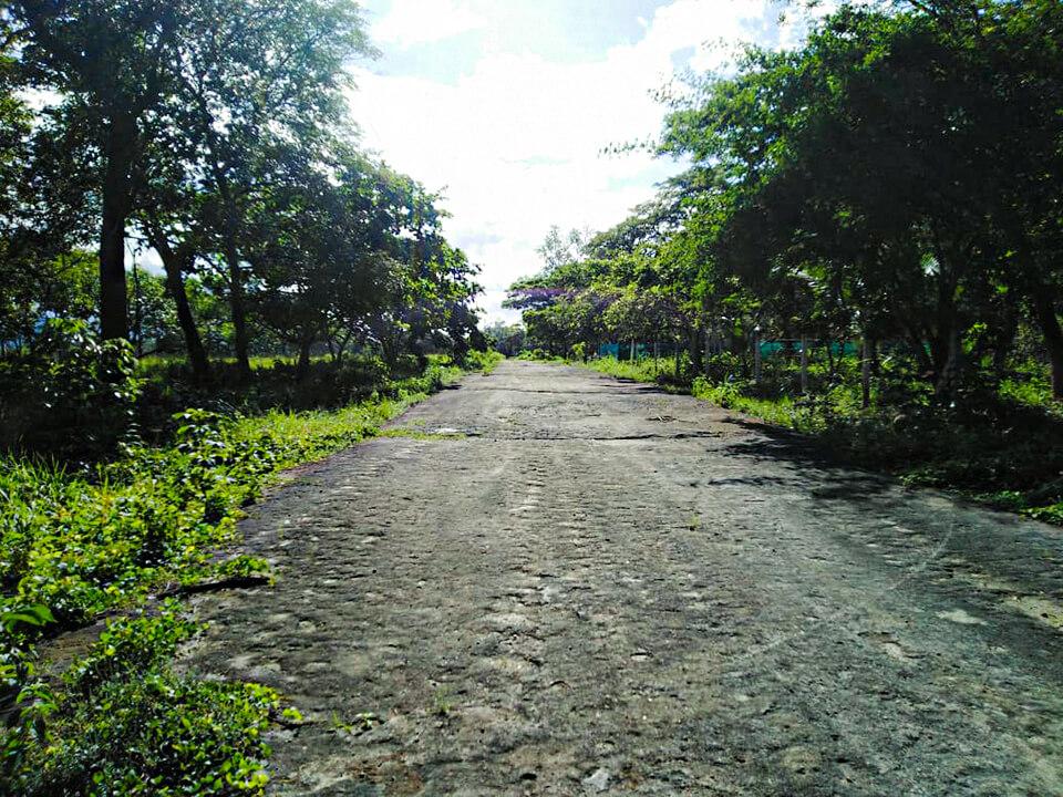 Foto #2 acceso ed